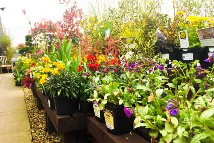 Home & Garden Centre