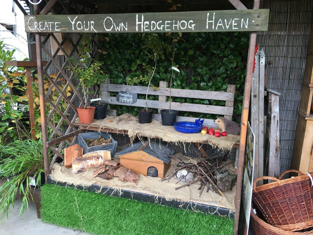 Hedgehog Haven